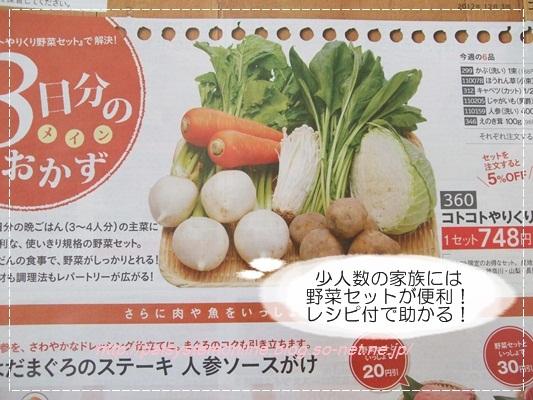 パルシステム野菜.JPG